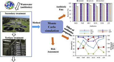 Monte Carlo Simulation in Water Treatment